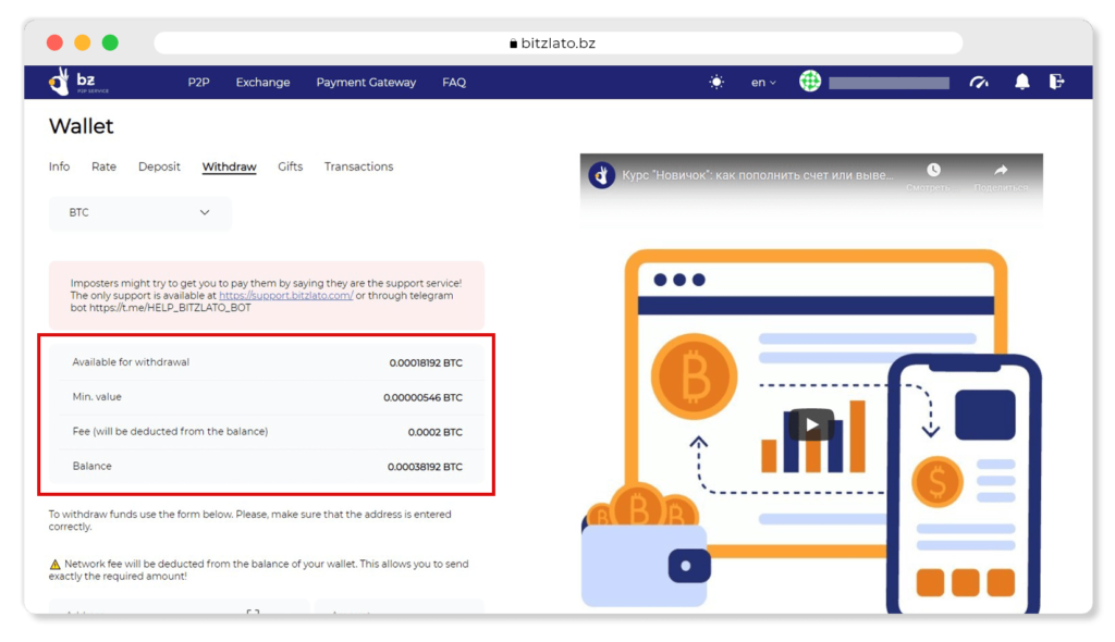 Balance, fee and amount available for withdrawal